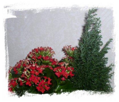 Joulukalenteri 2005