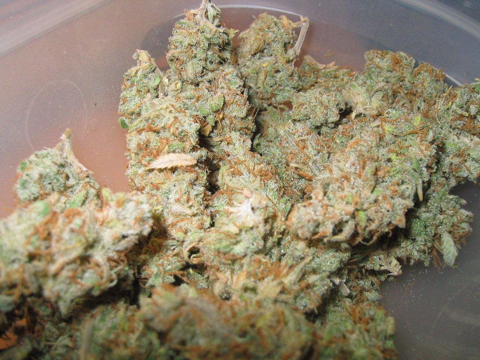 Homeinen Kannabis